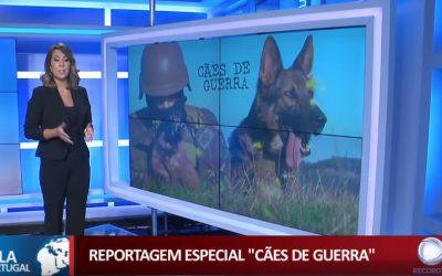 Polícia do Exército – Cães de Guerra